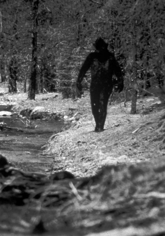 top10_phenomena_bigfoot_02