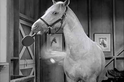 The Best Of Mr. Ed