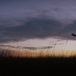 To_the_Wonder_Terrence_Malick_78