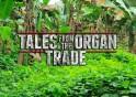 talesfromtheorgantrade-tfs