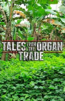 Trade online movie