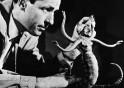Ray Harryhausen In Action