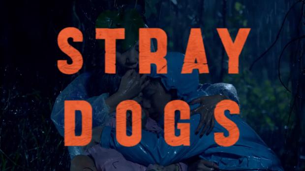 stray dogs tsai ming-liang