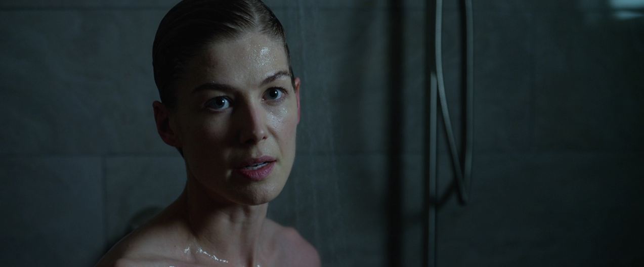 Explore Fincher's 'Gone Girl' Commentary