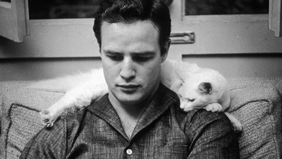 The Legacy and Enigma of Brando