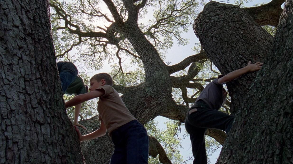 The Cinematography of Emmanuel Lubezki: Shaping the Landscape of Modern Film