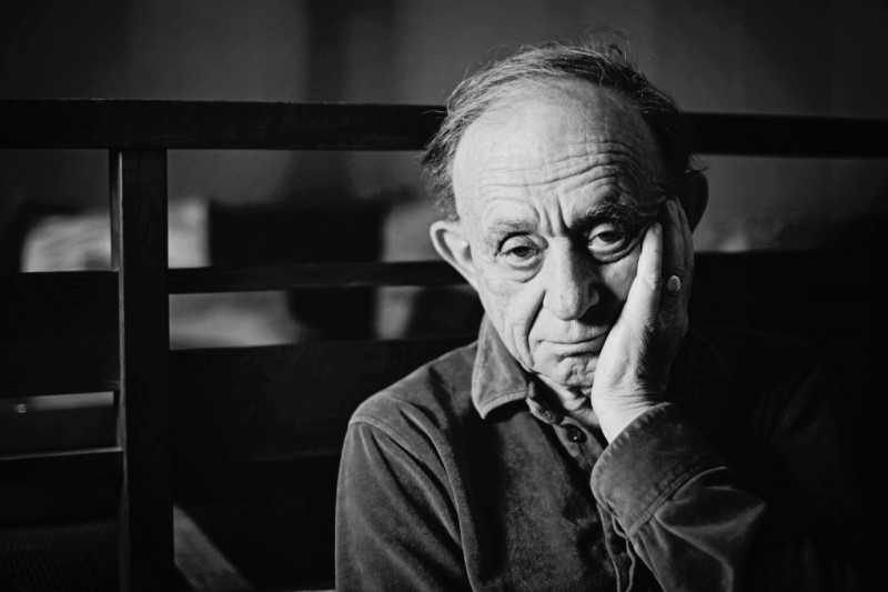 Frederick Wiseman on the Democracy of Libraries and Why His Films Would Never Work as a TV Series
